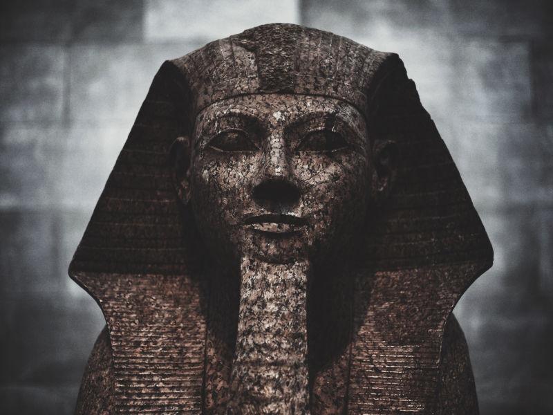 Die Pharaoameise kommt nicht aus Ägypten