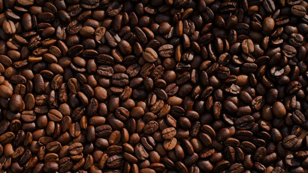 Kaffee gegen Ameisen